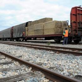 Transport par ferroviaire